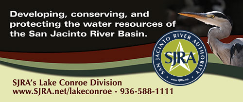 Lake Conroe Division