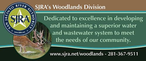 Woodlands Division