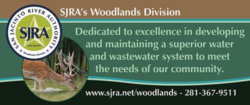 woodlands-banner
