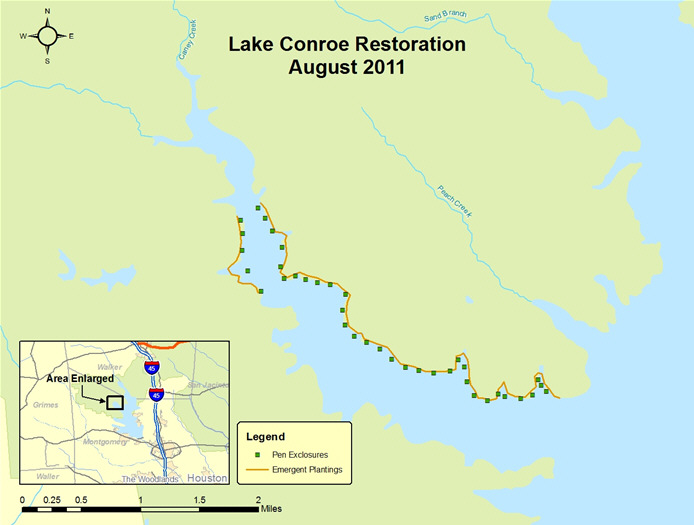 Establishing native aquatic vegetation in lake conroe tx for Lake conroe fishing map